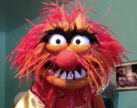 Animal Muppet poser puppet prototype by Terry Angus